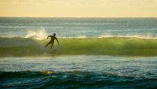 Free Early Morning Surfer Stock Images - 2787894