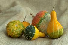 Free Pumpkin Royalty Free Stock Photo - 27806125