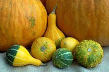 Free Pumpkin Stock Photography - 27806132