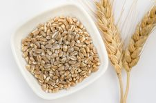 Free Wheat Grains And Ears Stock Photos - 27808163