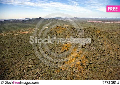 Free Desert In Bloom Stock Images - 27810814