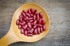 Free Red Bean Stock Image - 27821161