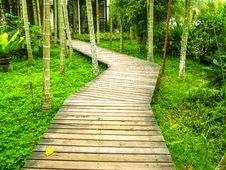 Wooden Pathway. Royalty Free Stock Photography