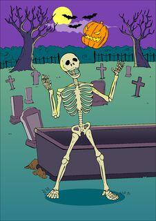 Free Skeleton Royalty Free Stock Photo - 27822525