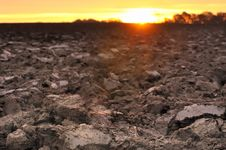 Free Agricultural Land At Twilight Stock Image - 27831751