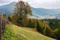 Free Beautiful Autumn  Landscape In The Mountains Royalty Free Stock Image - 27857146