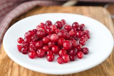 Free Cowberry On A White Plate Stock Image - 27850341