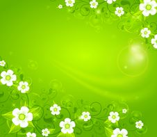 Free White Flowers On Green Background Stock Photo - 27851670
