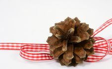 Pine-cone Decoration Royalty Free Stock Image