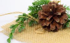 Free Pine-cone Ornament Stock Image - 27853461
