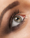 Free Woman Eye With Makeup Royalty Free Stock Image - 27860556