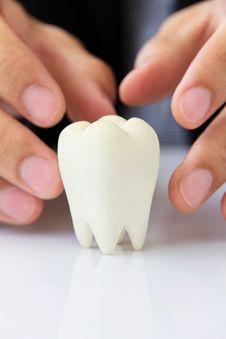 Free Molar,dental Concept Royalty Free Stock Photos - 27860058