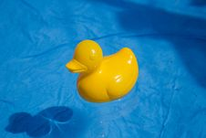 Free Duck Toy In The Water Royalty Free Stock Images - 27870269