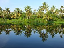 Free Kerala Backwaters, India Royalty Free Stock Image - 27889306