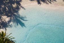 Free Palm Shadow On Tropical Lagoon Royalty Free Stock Photos - 2790688