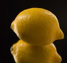 Free Lemon Stock Photography - 2793362
