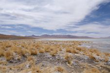 Free Altiplano Royalty Free Stock Images - 2795399