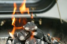 Free Preparing To Grill Stock Photo - 2797870