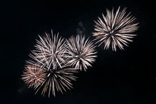 Free Festival Firework Royalty Free Stock Images - 2799619