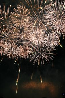 Free Festival Firework Royalty Free Stock Images - 2799839