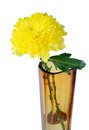 Free Yellow Flower In A Glass Vase Stock Image - 27906771