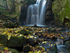 Free Its Raining Leaves Royalty Free Stock Image - 27913106