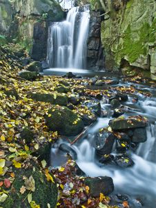 Free Yellow Autumn Leaves In A Woodland Stream Royalty Free Stock Photo - 27913305