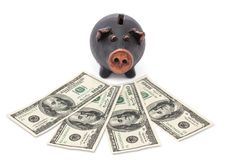Free Money And Black Piggy Bank Stock Photos - 27913823