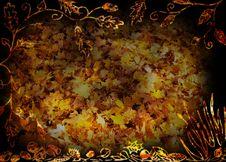 Free Autumn Montage Stock Image - 27916431