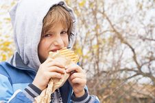 Free Boy Eating Sandwich Stock Image - 27917361