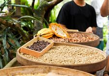 Free Street Vendor Selling Legumes Stock Photography - 27918362