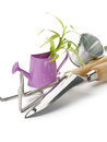 Free Purple Watering Can With Green Plant Stock Photos - 27923343