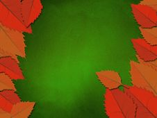 Free Chalkboard With Leaves Stock Photography - 27937952