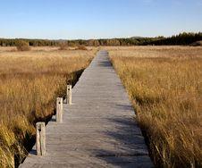Free Wooden Bridge In The Wetlands Stock Photo - 27938350