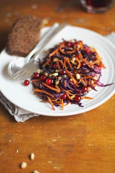 Free Salad With Red Cabbage, Carrots And Cranberry Stock Image - 27942221