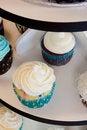 Free Wedding Cupcakes Stock Photo - 27953080