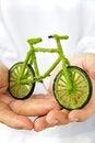 Free Eco Bicycle Icon Royalty Free Stock Photo - 27961705