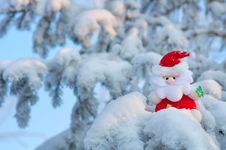 Free Santa Claus On The Tree. Stock Photography - 27964612