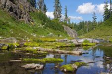 Free Baker National Forest In Washington Royalty Free Stock Photo - 27968875