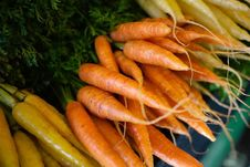 Free White And Orange Carrot Bunches Royalty Free Stock Photos - 27982428