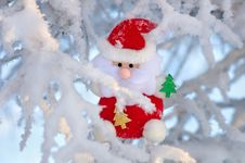 Free Santa Claus On The Tree. Royalty Free Stock Images - 27983609