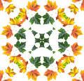 Free Autumn Mandala Stock Images - 283864