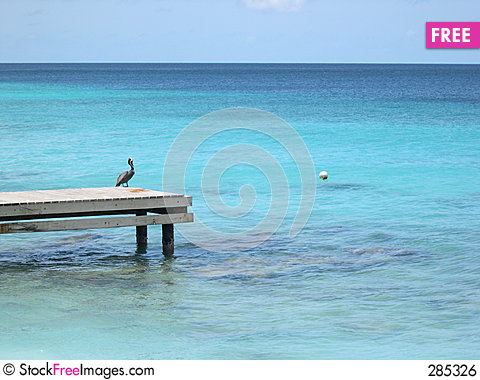 Free Pelican On Pier Royalty Free Stock Image - 285326