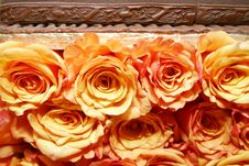 Free Orange Roses 035 Stock Photos - 280043