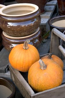 Free Pumpkin Display With Ceramic Bowl Stock Photography - 280142