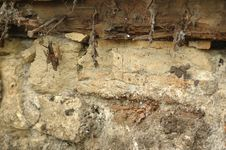 Free Rotted Sill Stock Photography - 281552