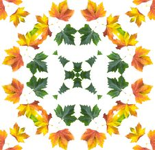 Free Autumn Mandala Stock Images - 283864