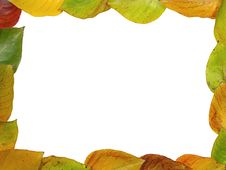 Free Autumn Framework Stock Images - 286684