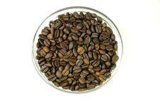 Free Coffee Stock Photo - 288510