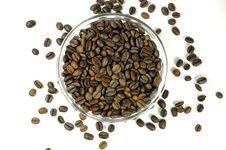 Free Coffee Stock Image - 288511